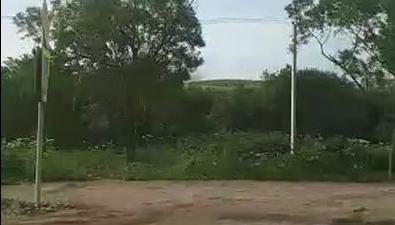 Южно-сахалинская свалка снова решила подымить