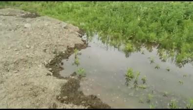 Участок жителей Сокола больше месяца топит вода изгнилых труб