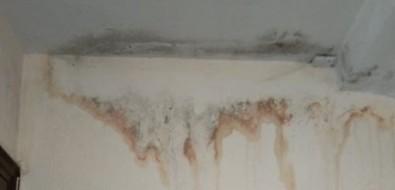 Дом вАниве пережил ремонт крыши, ноне перестал течь