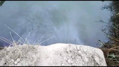 """""""Островной"""" обещает выяснить, чтоза жирзагрязняет бухту наШикотане"""