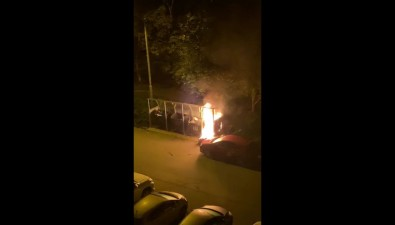 При пожаре намусорной площадке вЮжно-Сахалинске пострадал автомобиль