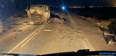 Четыре коровы итри машины попали вДТП возле Ключей