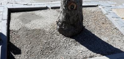 Эксперимент вЮжно-Сахалинске показал, чтогрязь можно не декорировать