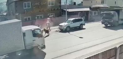 "ВЮжно-Сахалинске в""Лэнд Крузер"" врезалась лошадь"