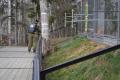 Сахалинский зоопарк обрабатывают отклещей