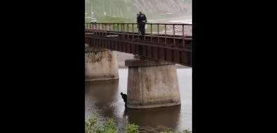 ВГорнозаводске нарушитель несколько часов прячется отсотрудников ГИБДД вреке