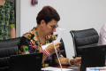 Депутаты Южно-Сахалинска, обмахиваясь бумажками, приняли важные решения
