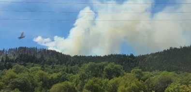 ВКорсаковском районе горит лес