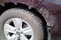 ВЮжно-Сахалинске ночью собака покусала автомобиль