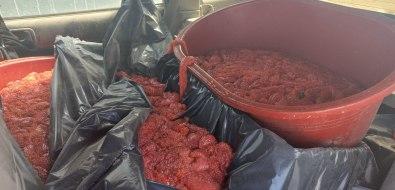 225 килограммов браконьерской икры заставили сахалинца бежать отполиции