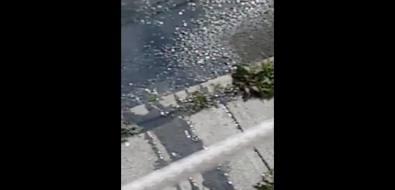 Невельчане досих пор ждут устранения утечки канализационных стоков