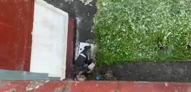 Южносахалинцы ждут полицию спробами жидкости, вылитой неизвестным возле их дома