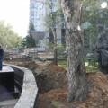 В Южно-Сахалинске памятник Геннадию Невельскому, открытый год назад, уберут с тротуара