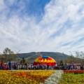 На Сахалине завершился Всероссийский день бега
