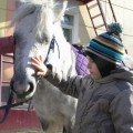 """Сеансы конной терапии проходят в центре """"Преодоление"""" в Южно-Сахалинске"""