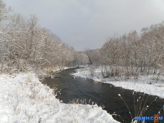 Зимний лес  Просмотров: 127 Комментариев: 0