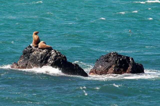 Островок  на  двоих... Фотограф: VictorV  Просмотров: 1505 Комментариев: 1