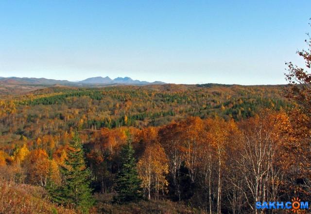 IMG_0209-к (2) Осень, взгляд на Жданко.  Просмотров: 371 Комментариев: 0