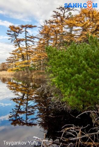 Озера, осень... Фотограф: Tsygankov Yuriy  Просмотров: 190 Комментариев: 0