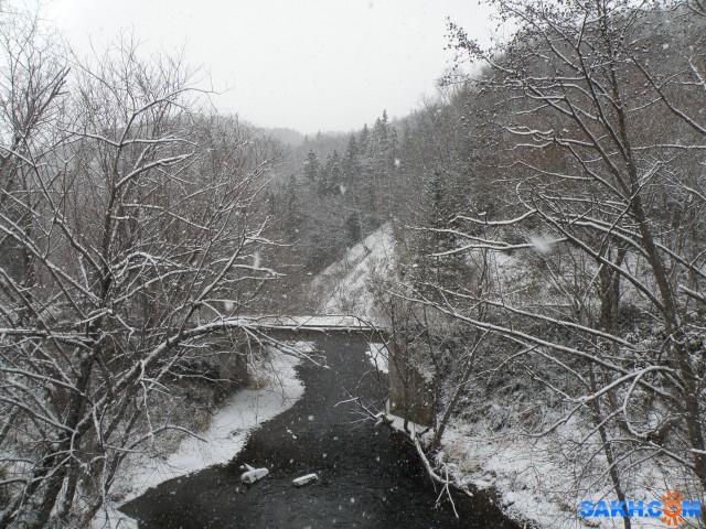 Зимний лес  Просмотров: 166 Комментариев: 1