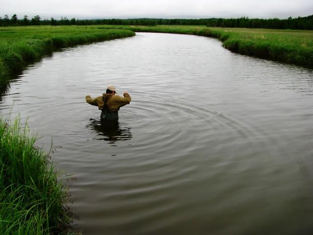 Речка не широка , но глубока,течет торфяная  тихо-тихо...