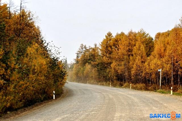 DSC03723 Фотограф: vikirin  Просмотров: 697 Комментариев: 0