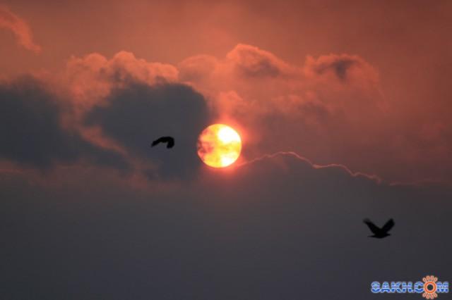 Закат 19 марта.. Радиация... Фотограф: vikirin  Просмотров: 2680 Комментариев: 0