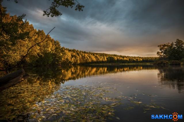 После дождя Фотограф: Игорь Голубцов  Просмотров: 460 Комментариев: 1