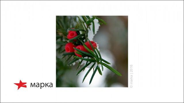 вариант логотипа и элементов фирменного стиля городского парка имени Ю.Гагарина Фотограф: © marka | 2016  Просмотров: 203 Комментариев: 0