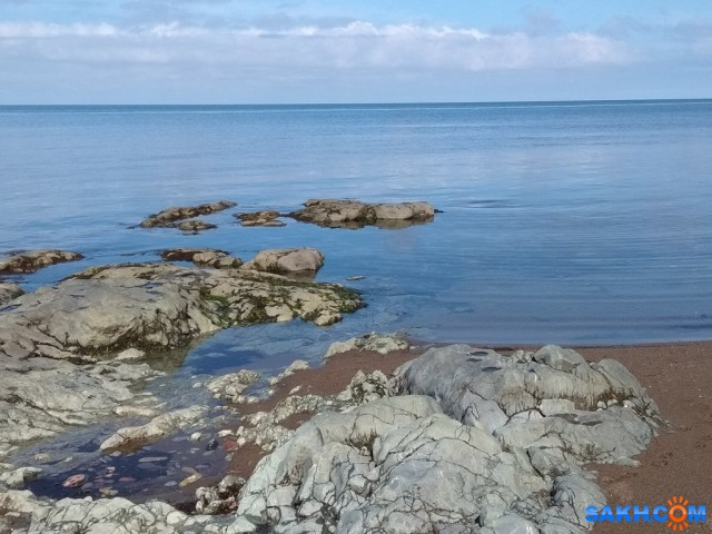 IMG_20180818_110152 Фотограф: vikirin  Просмотров: 186 Комментариев: 0