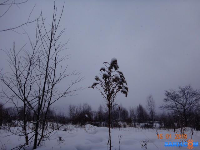 а снег идёт...  Просмотров: 413 Комментариев: 0