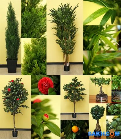 Наши искусственные растения.Заказ Фотограф: нат  Просмотров: 486 Комментариев: 0
