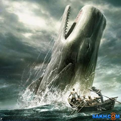 китобойцы  Просмотров: 210 Комментариев: 0