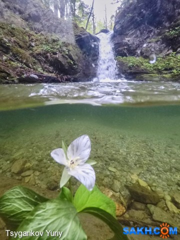Водопад на Марковке Фотограф: Tsygankov Yuriy  Просмотров: 495 Комментариев: 0