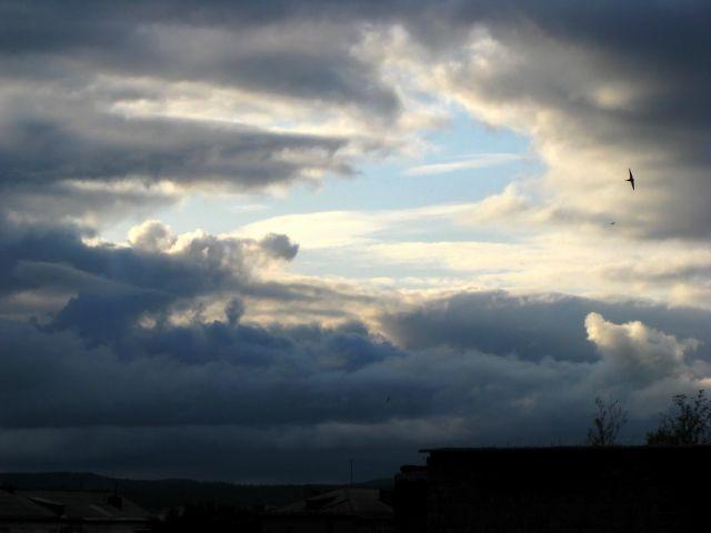 Дайте неба глоток.. Фотограф: vikirin  Просмотров: 3918 Комментариев: 0