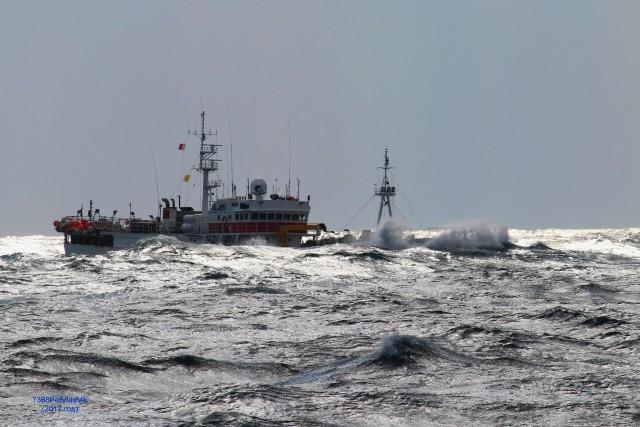 НЕОН. (НЕОН штормует в Татарском проливе. ИМО 9004293) Фотограф: 7388PetVladVik  Просмотров: 3232 Комментариев: 1