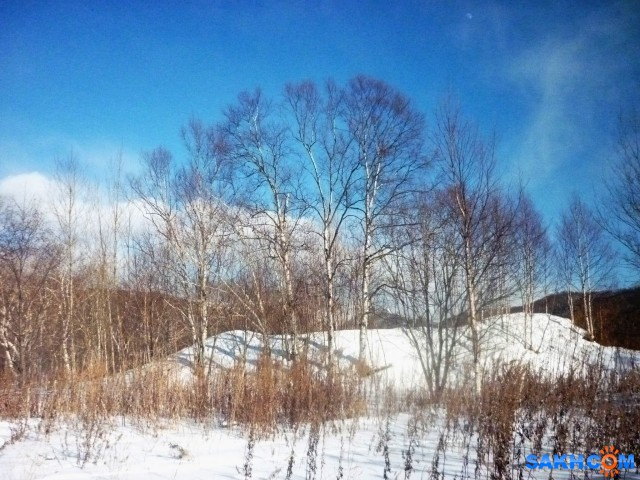 мороз и солнце - день чудесный!  Просмотров: 324 Комментариев: 0