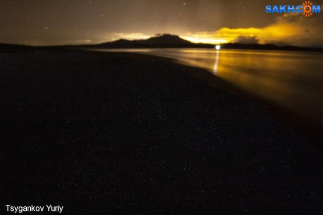 Биолюминесцентный планктон
