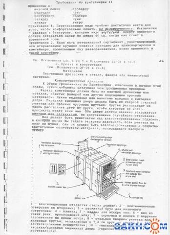 клетка1 требование к клетке для перевозки медведя  Просмотров: 2905 Комментариев: 0