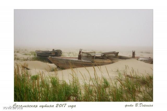 Сахалинская путина 2017  Просмотров: 234 Комментариев: 0