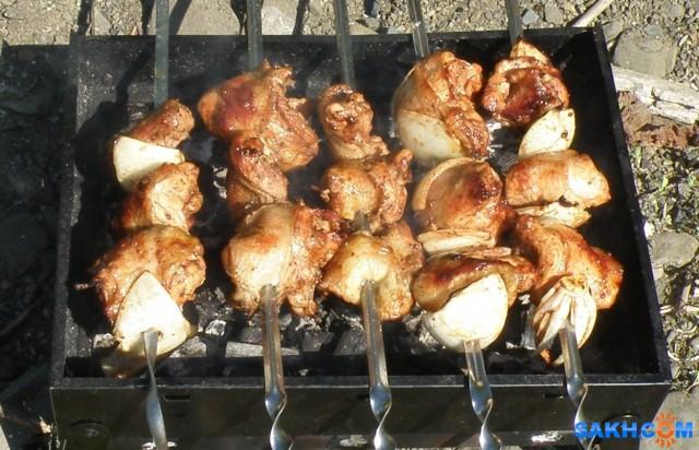 Шашлык из курицы.  Просмотров: 202 Комментариев: 0