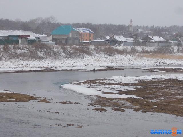 Орлан на берегу протоки Красноармейской