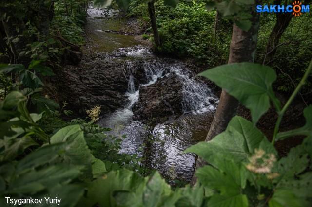 комаринное местечко! :) Фотограф: Tsygankov Yuriy  Просмотров: 223 Комментариев: 0