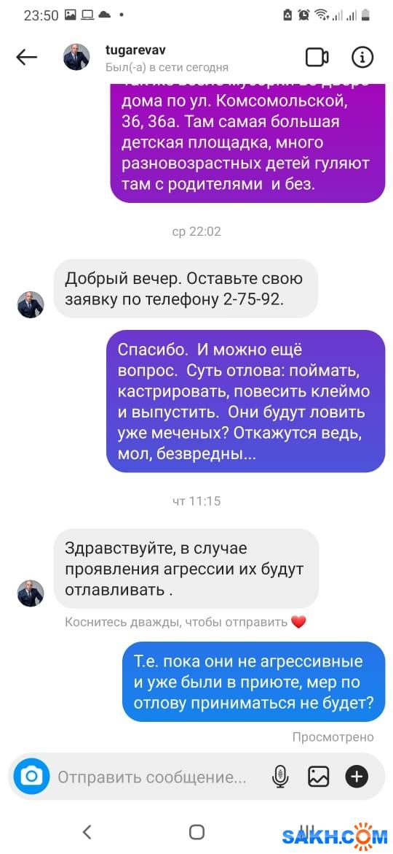 WhatsApp Image 2021-04-25 at 23.51.33 (1)