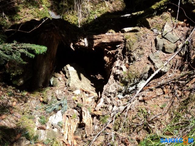 Вход в обвалившийся блиндаж в районе заставы Кире  Просмотров: 1428 Комментариев: 0