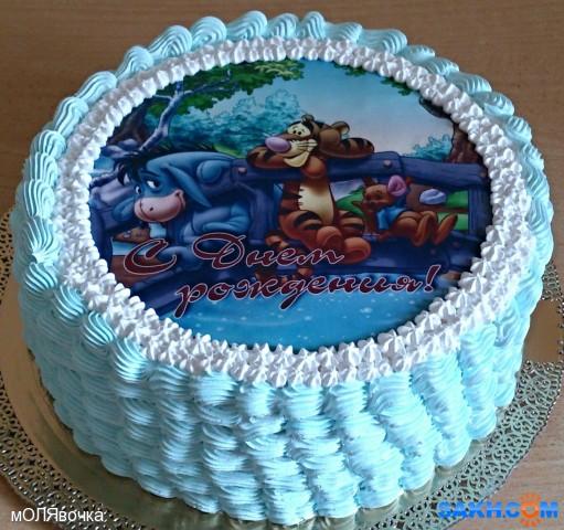 торт с мастикой и вафельной картинкой фото