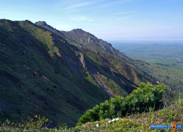 116-к Гора Владимировка, вид с тропы  Просмотров: 413 Комментариев: 0