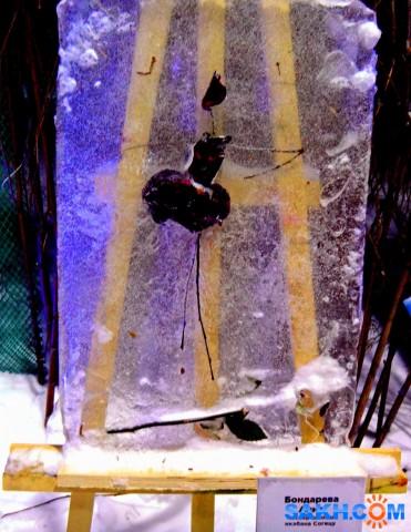 Ледяная картина.  Просмотров: 228 Комментариев: 0
