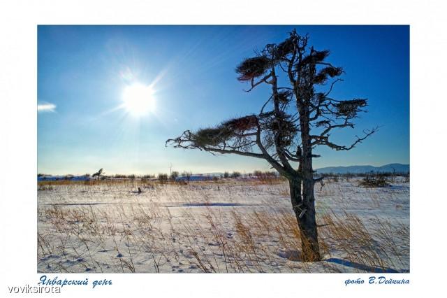 Январский день Фотограф: В.Дейкин  Просмотров: 95 Комментариев: 0