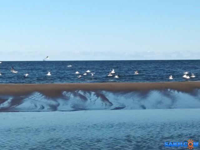 Охотское море Фотограф: vikirin  Просмотров: 204 Комментариев: 0